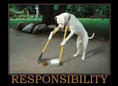 White dog standing on hind legs taking personal responsibility by sweeping up his own poop.